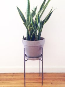 The Vernon Planter Design Thoughts Home